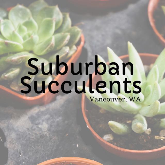 SuburbanSucculents_Logo_Square